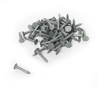 NAC040 10kg tub of 40 x 2.65 galvanised clout nails